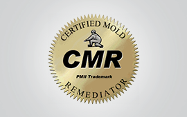 Certified Mold Remediator